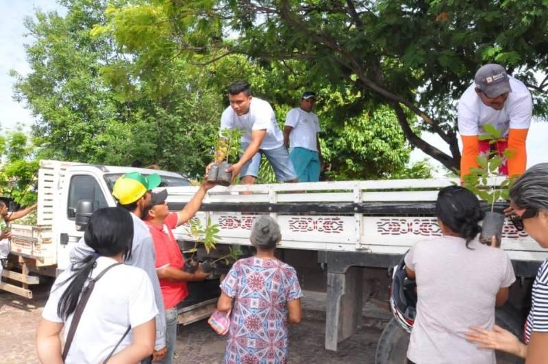 Programa Sua Casa + Verde entrega mais de 3 mil mudas em Bom Jesus