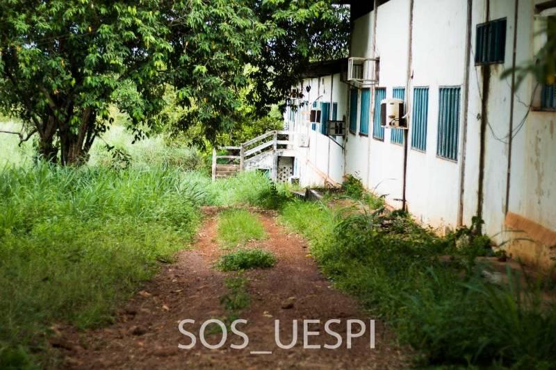http://www.portalb1.com/images/galerias/161/738032dd22cb9c349b93cd5ce2740e1d89128436.jpeg