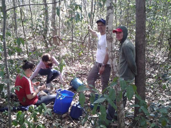 Projeto PRONEX desvenda o microbioma do solo em áreas de Cerrado preservado.