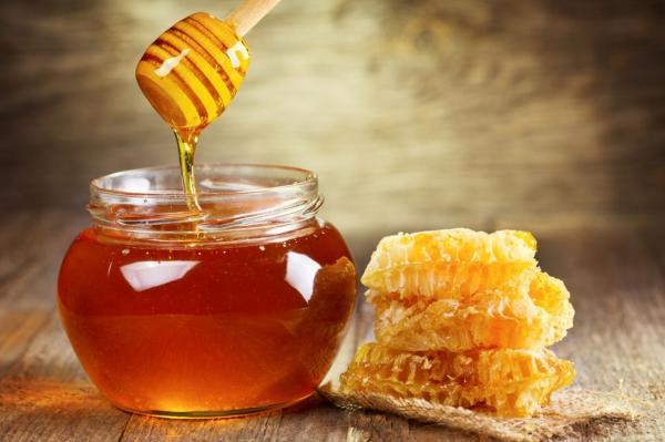 Produção de mel do PI cresce e gera quase R$ 45 milhões