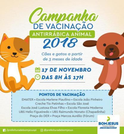 Bom Jesus realizará campanha de vacinação contra Raiva animal