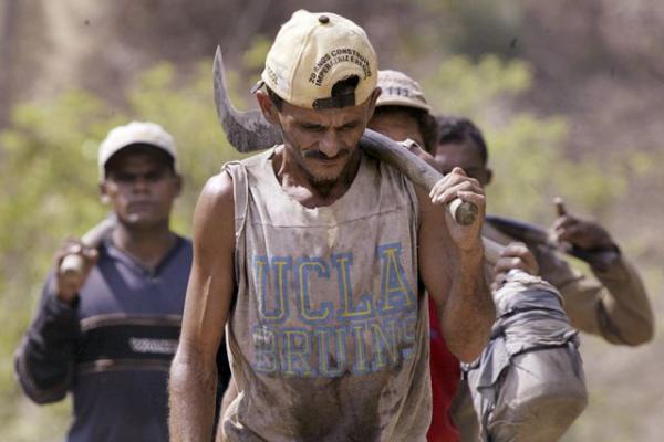 Piauienses em estado de escravidão são resgatados em SC
