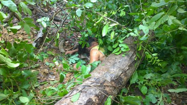 Homem foi encontrado morto debaixo de tronco de árvore