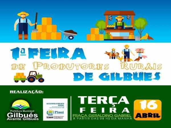 Participe: 1° Feira dos Produtores Rurais de Gilbués acontece nesta terça (16)