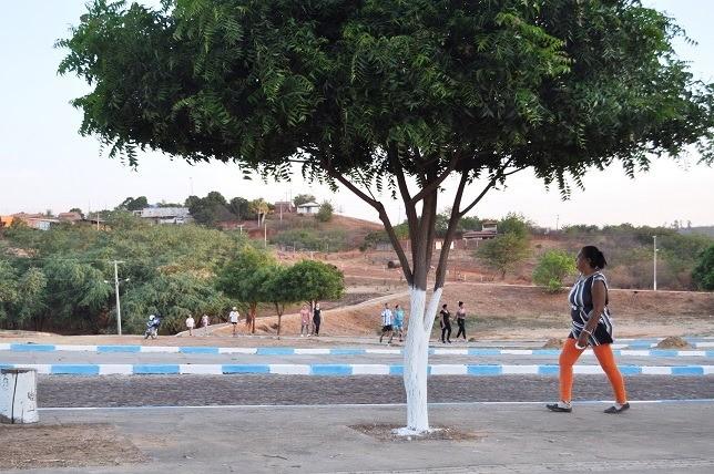 Caminhadas saudáveis em Avelino Lopes