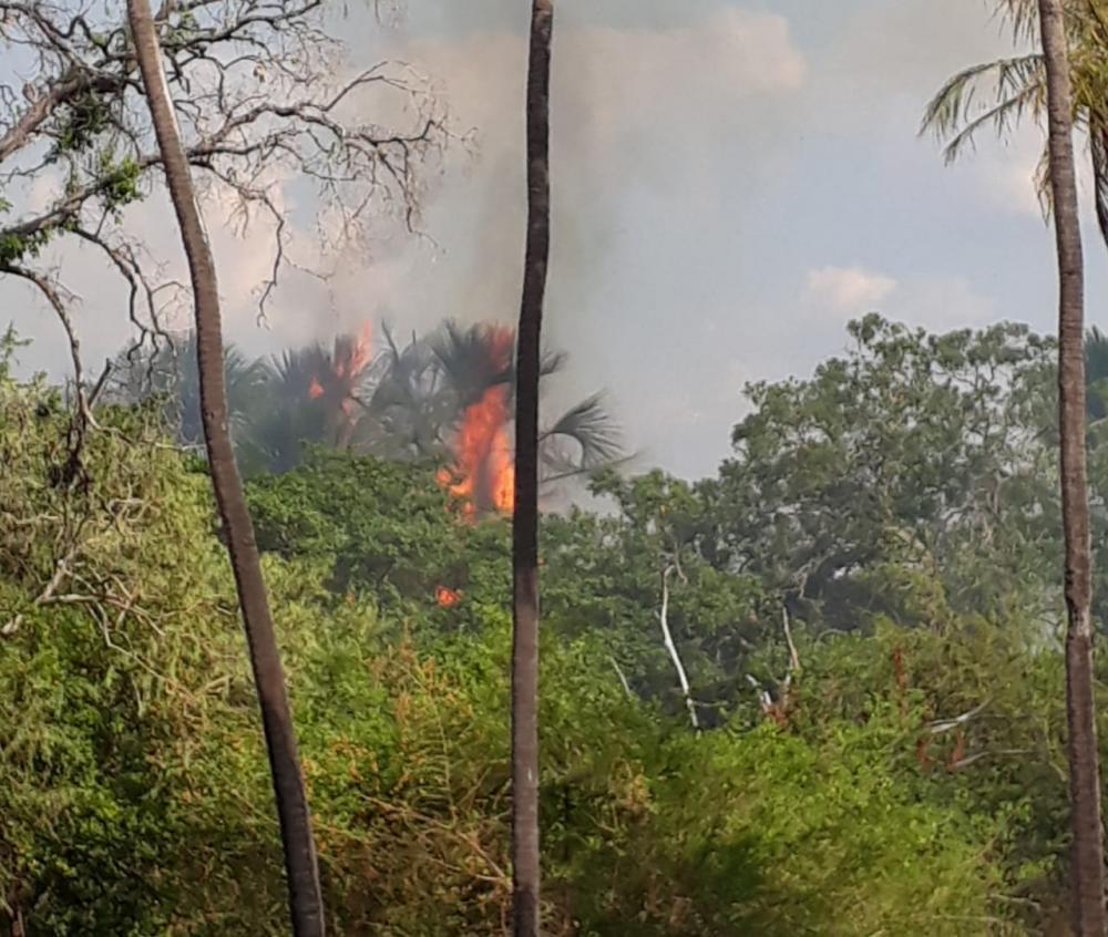 Incêndio criminoso atinge Parque Ambiental em Gilbués