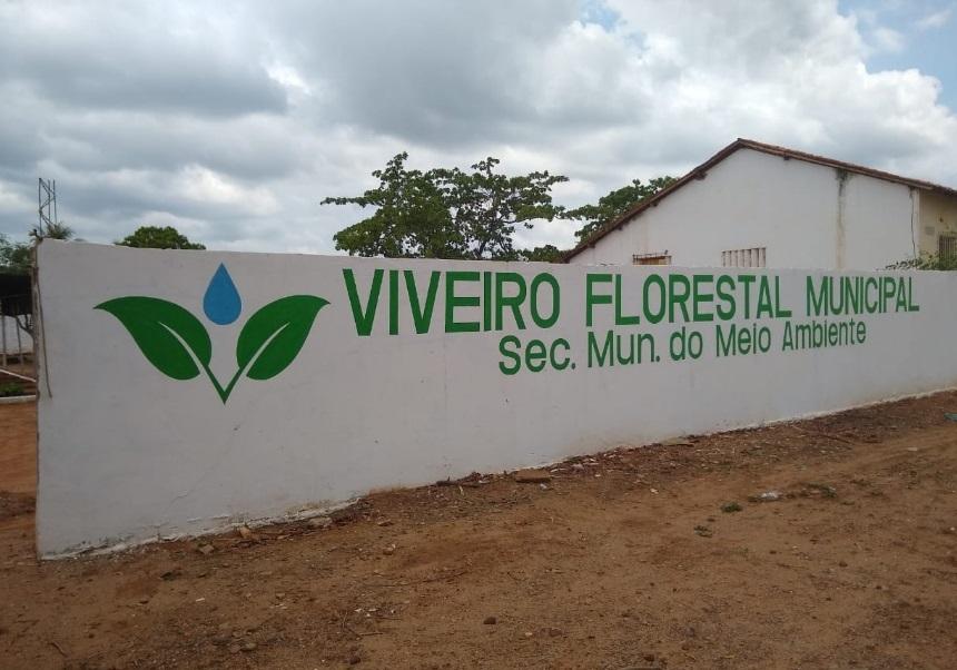Prefeitura de Colônia do Gurgueia implanta Viveiro Florestal Municipal