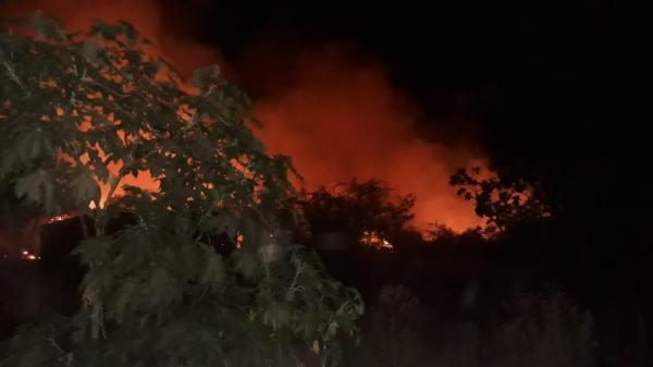 Incêndio destrói vegetação nativa do brejo na cidade de Gilbués