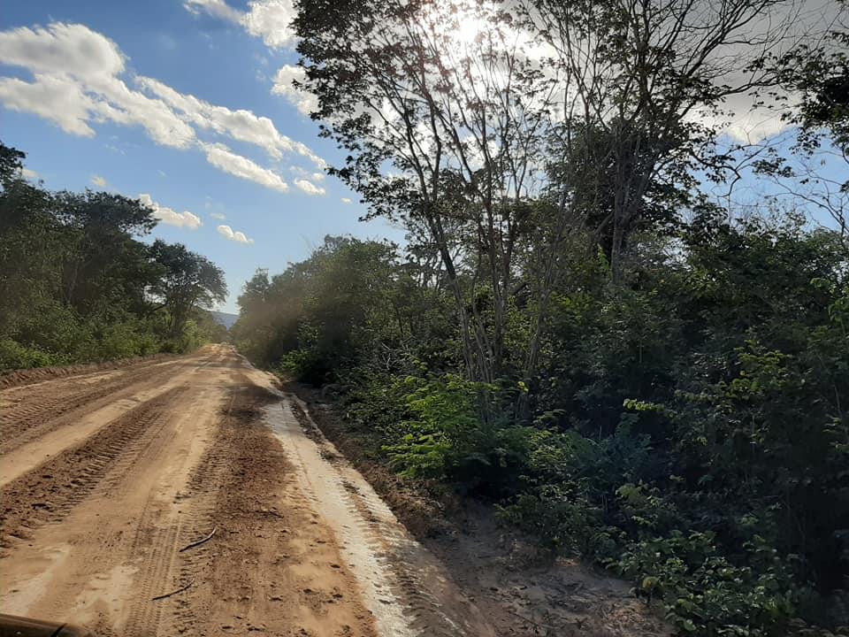 Prefeitura de Palmeira inicia recuperação de estradas do município