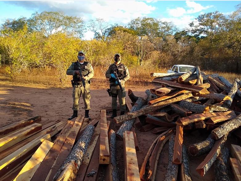 PM apreende em Curimatá mais de 500 toras de madeira protegida por lei