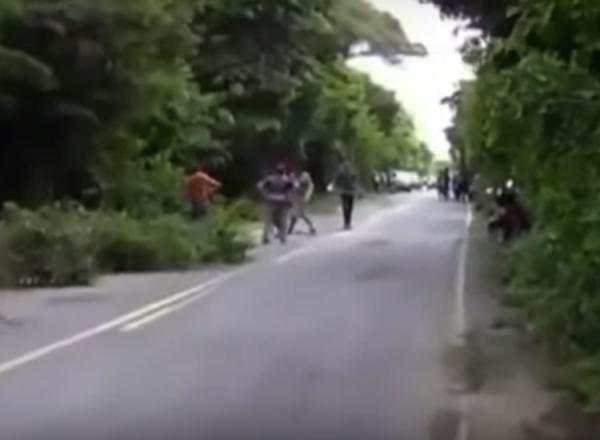 BR-135: moradores se mobilizam para capinar margem da estrada