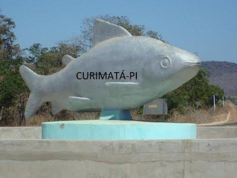 Curimatá - PI